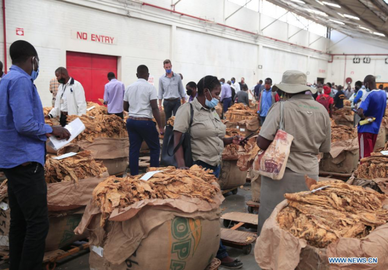 How the tobacco sector performed last season